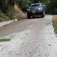 Pelancong ke Mossy Forest Selesa Jalan Baharu Siap